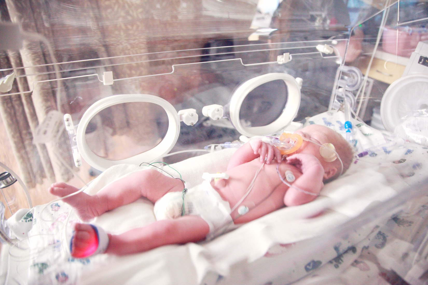 A newborn inside an incubator